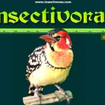 insectivoras-2-g